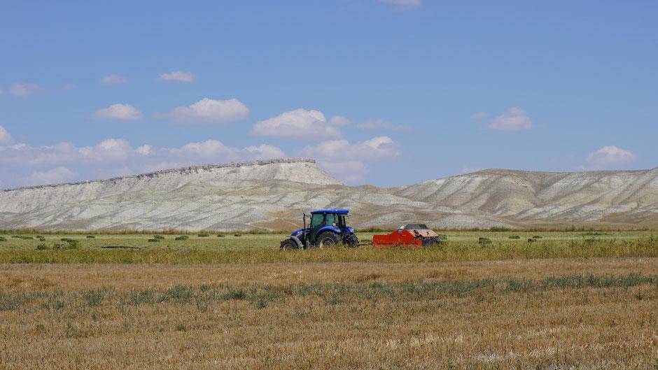 Ein Bild für das Traktorenprospekt