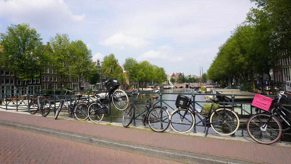 Hollandräder, oder was soll es denn sonst hier geben?