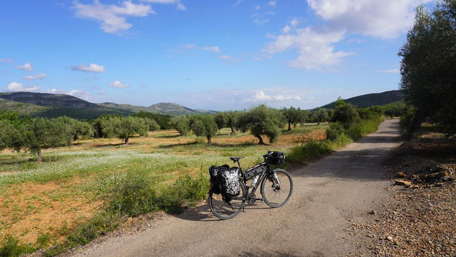 Auf Feldwegen durch eine tolle Landschaft ...