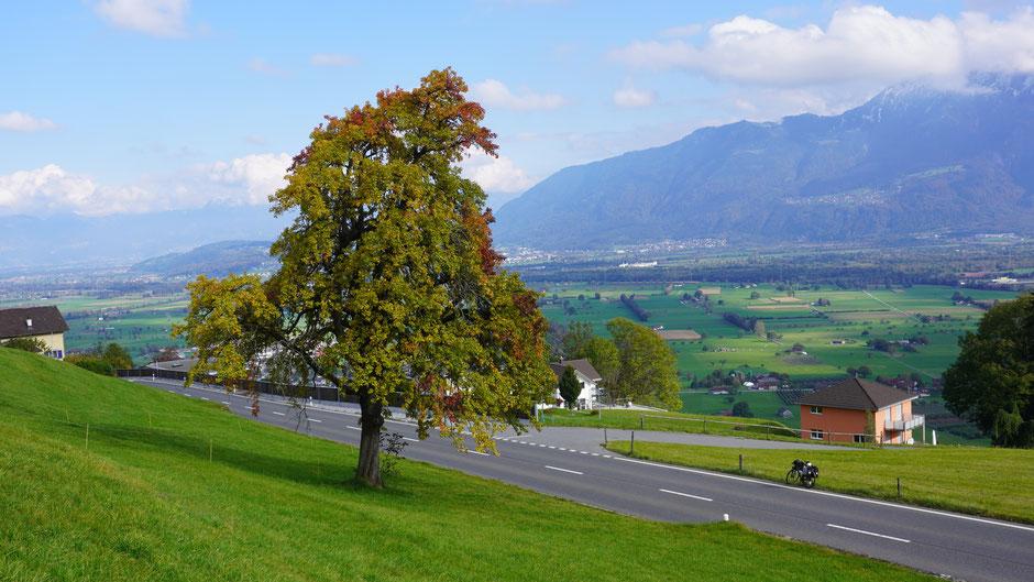 Blick ins Rheintal ...