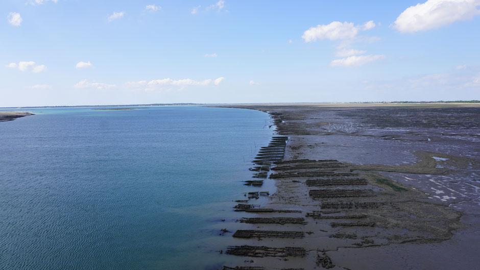 Brückenblick nach unten: Meereswasser und Austernzucht