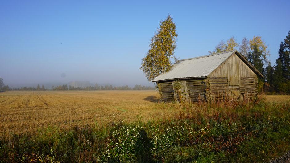 Die Hütte in der Sonne, das Land noch im Nebel ...