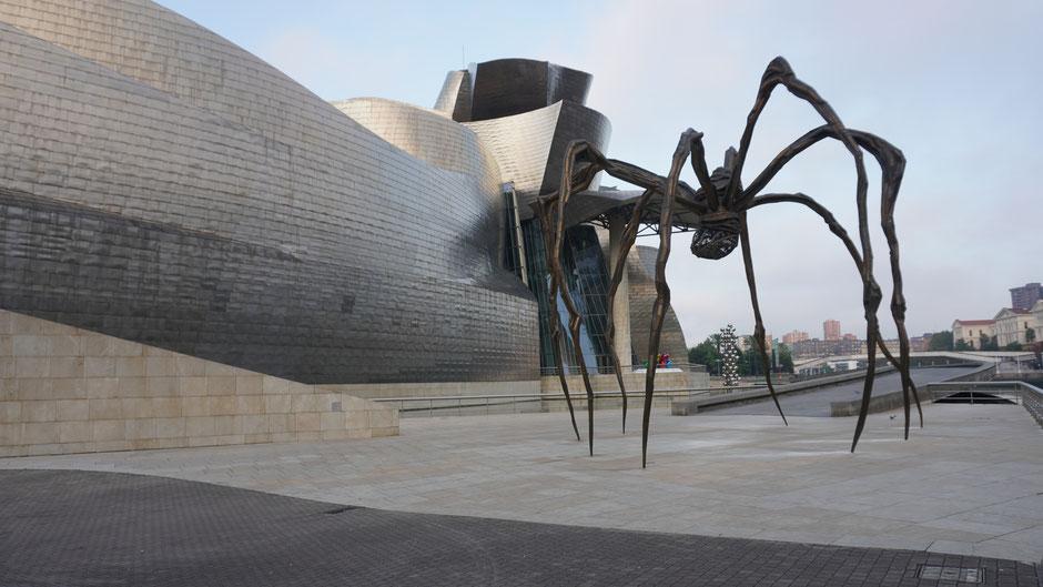 Die meistfotografierte Spinne des Baskenlandes