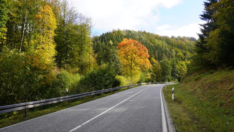 Auch der Harz kann Farbe zeigen ...