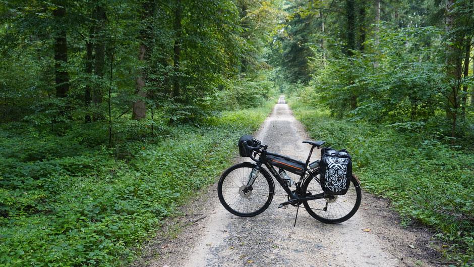 Ein Fahrrad steht im Walde ganz leis und still ...