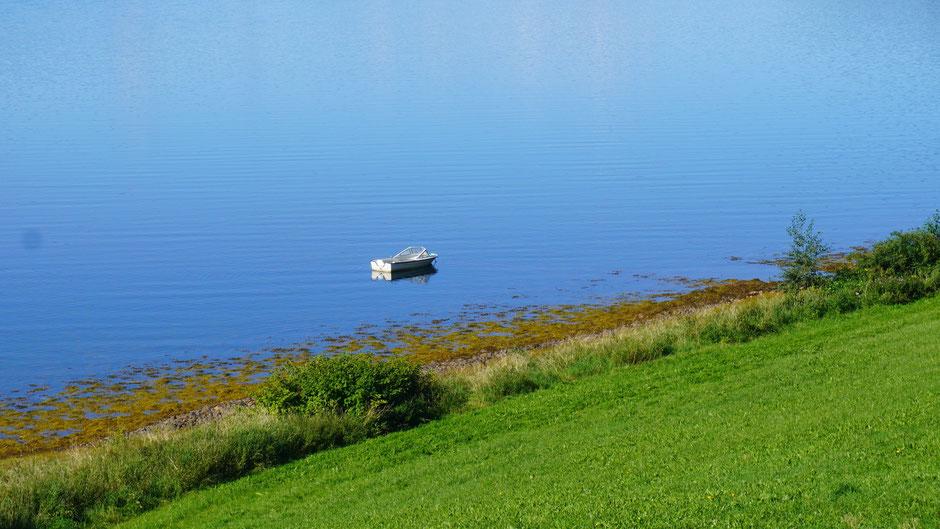 Dümpeln im ruhigen Fjordwasser