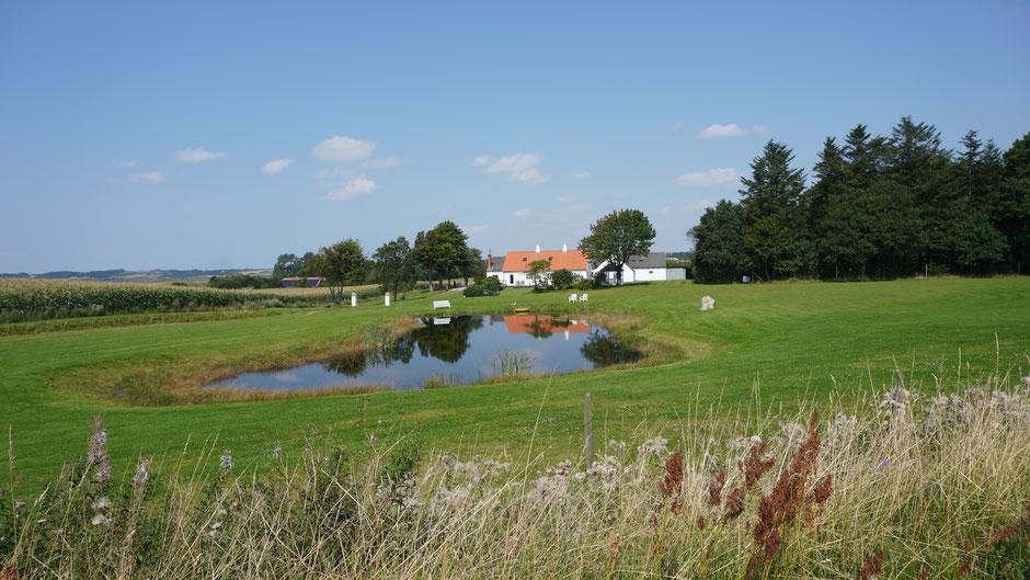 Ein Hof mit Teich zum Plantschen