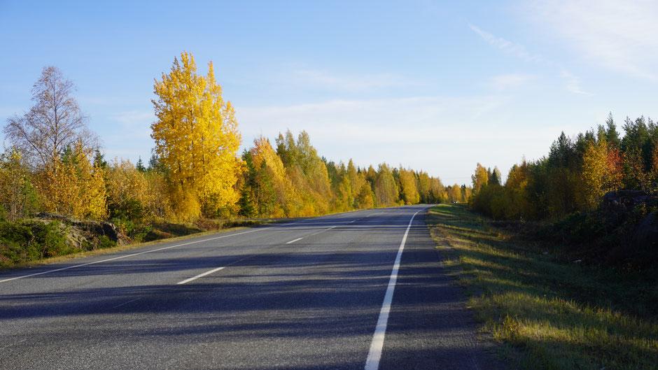 Herbstliches Straßenbild
