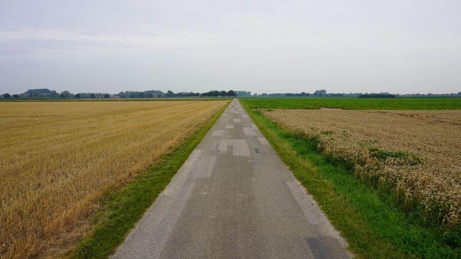 Fleckerlteppich als Straßenbelag
