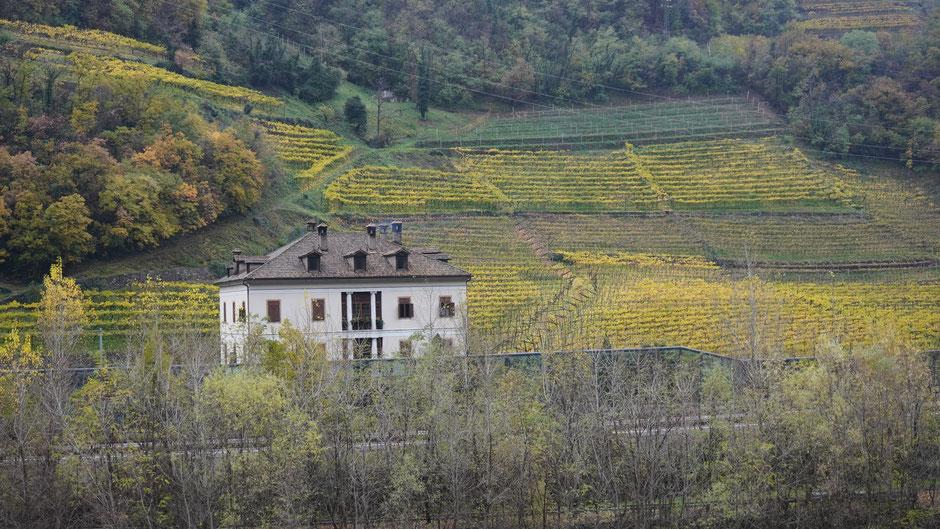 Villa im Weinberg - nur die Autobahn davor stört mächtig