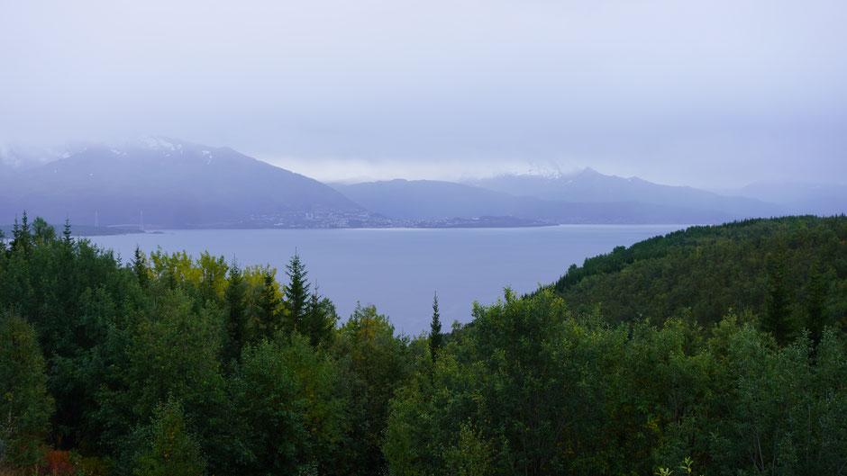 Narvik zeigt sich ziemlich düster