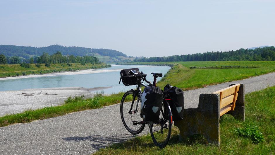 Am Rheindamm - dem Fluss des Wassers und den Biegungen folgen ...