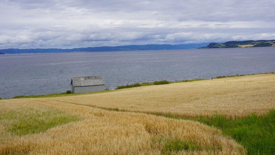 Auch eine graue Hütte macht sich als Abwechslung mal gut in dieser Landschaft