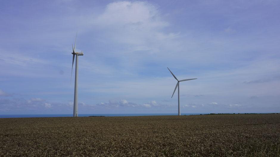 Windräder, mit Strom für die Mühlen ...
