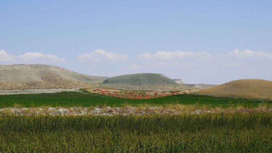 Grüner Berg mit roter Zwiebelkrause