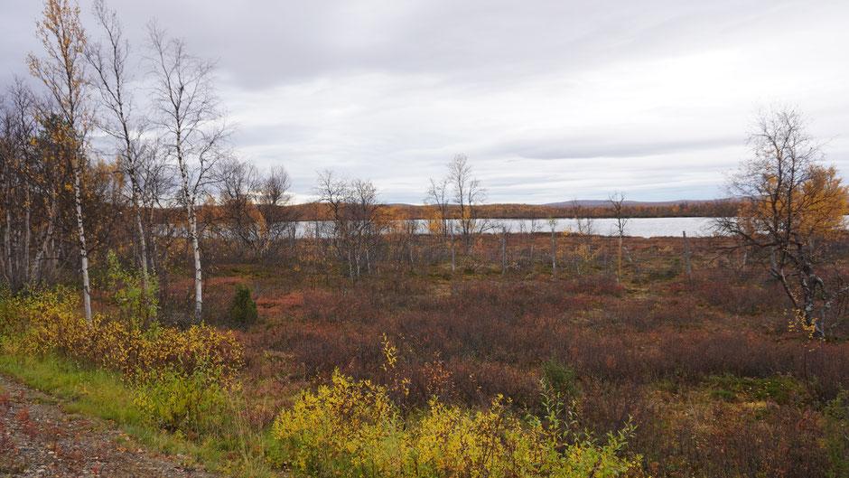 Der graue Himmel dämpft die Farben, und gibt seine an die Seen ab