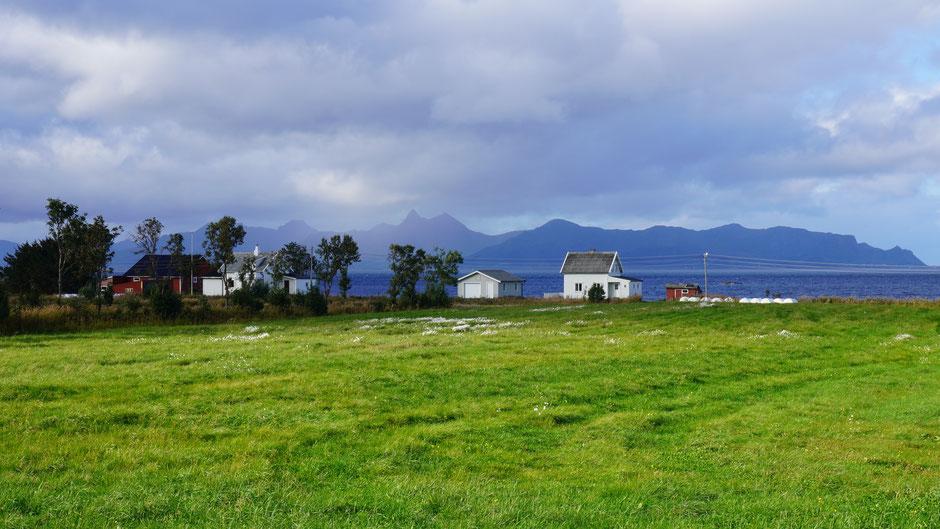 Sonnenspot auf grüne Wiese und ein paar bunte Häuser am Fjord