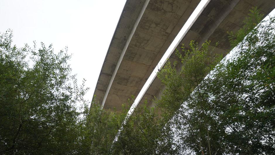 Groß müssen sie hier sein, die Autobahnen und deren Brücken