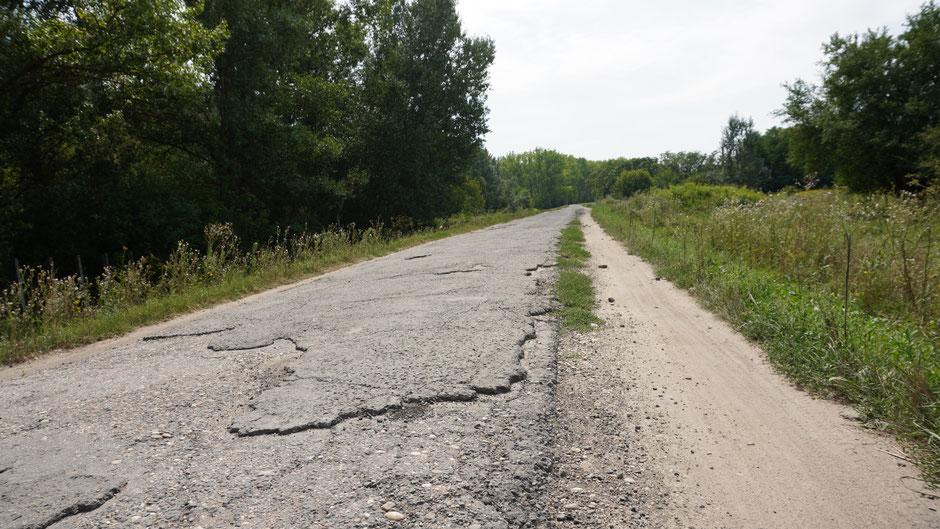 Links der Radweg EuroVelo Nr. 6 - rechts daneben die Fahrspur für Einheimische ...