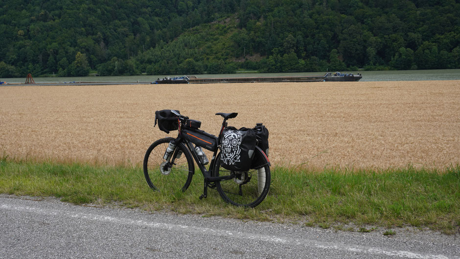 Entlang der Donau. Ich nehme das Rad statt des Kahnes.