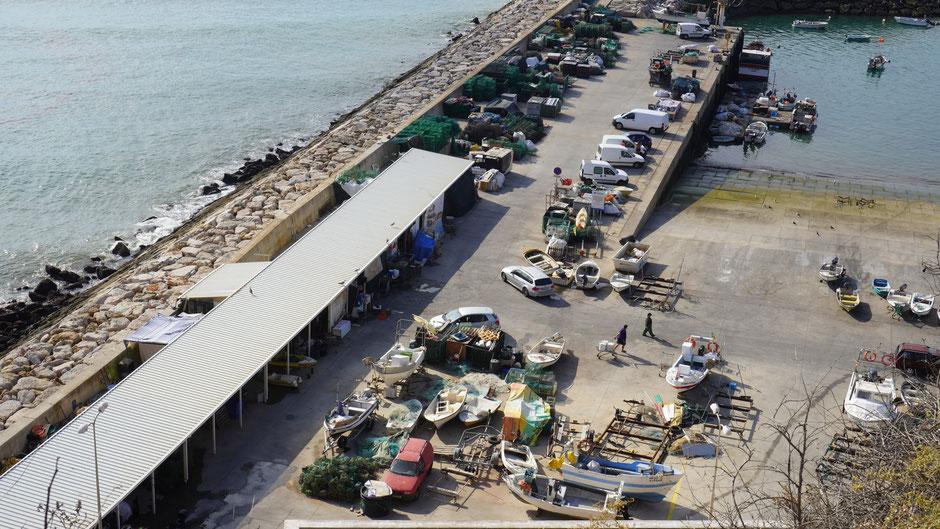 Fischeralltag im Hafen