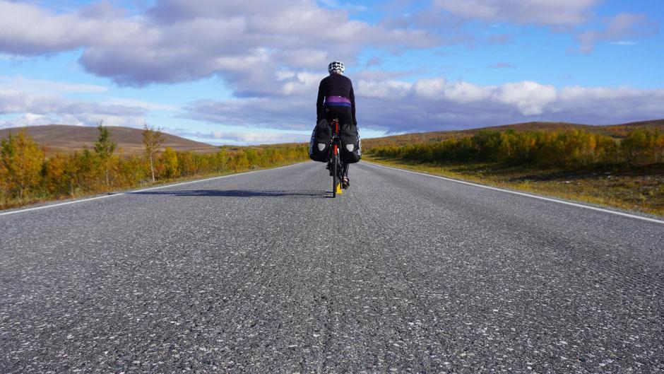 Arctic Cycling