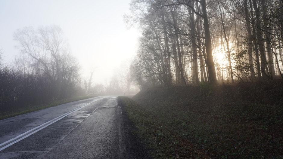 Morgenstimmung mit Nebel und aufkommender Sonne