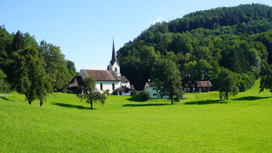Arbogast - Vorarlberger Idylle in Grün