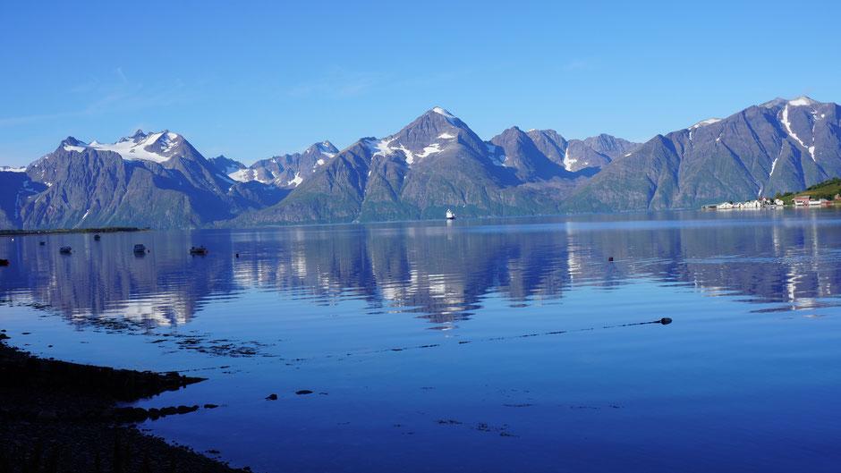 Blick zurück. Auch andere Fjorde wollen bald ins Bild ...