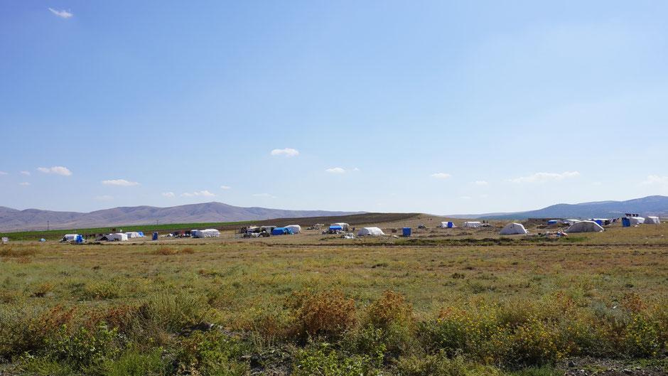 Je größer die Felder, desto größer die Zeltlager der Menschen, die dort arbeiten