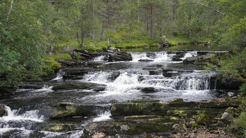 Stufe um Stufe tiefer, und irgendwann dann in den Fjord ...