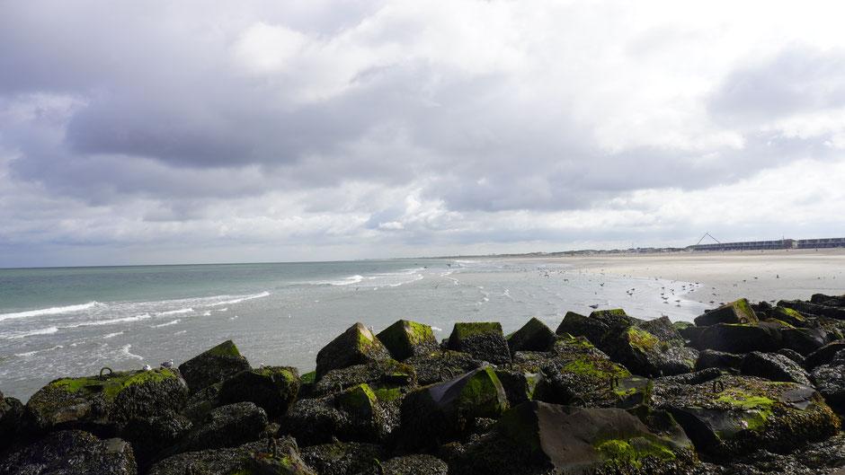 Hollands Küste, schon schön ...