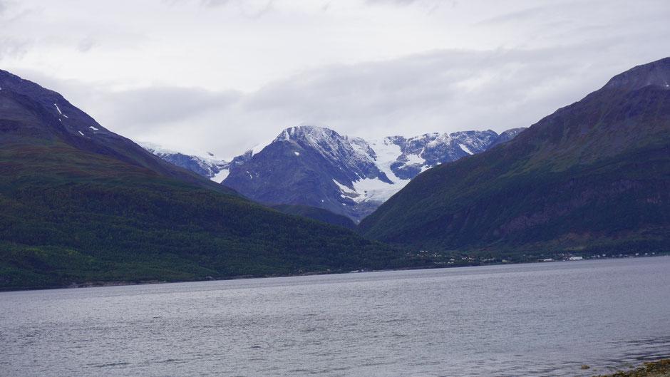 Gletscherzunge fast bis zum Meer