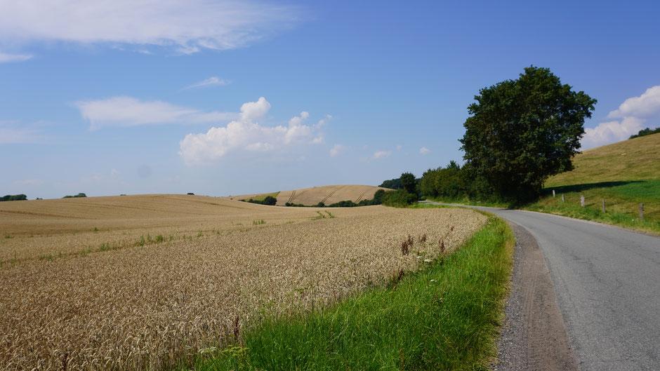 Holsteiner Straßen übers Land