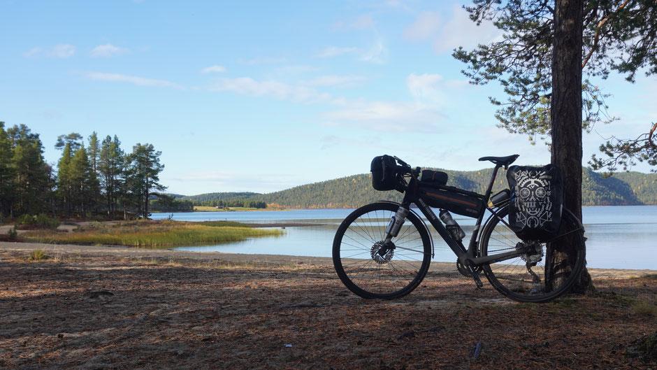 Waldidylle mit See und Reiserad
