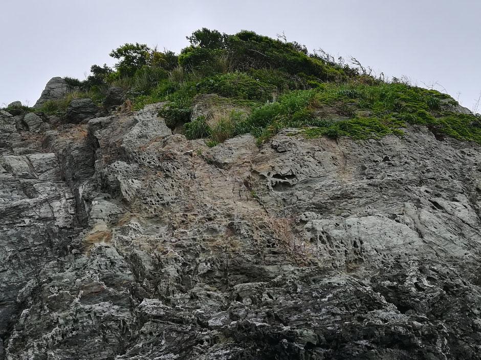 海に面した崖に無数の穴が空いている