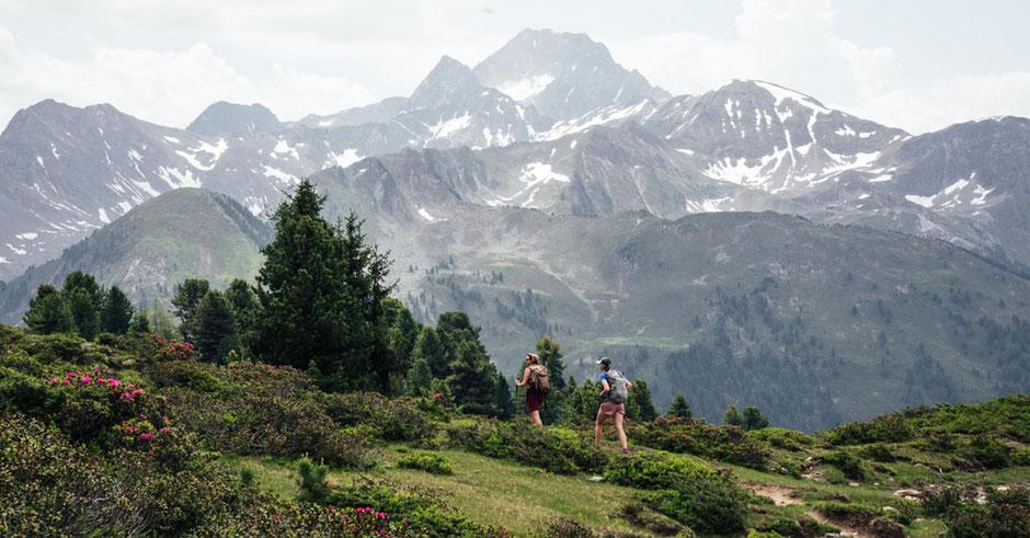 Innsbrucktrek - Weitwanderung, Feldringer Böden, Feldringalm, Faltegartenköpfl, Ötztaler Alpen, Stubaier Alpen
