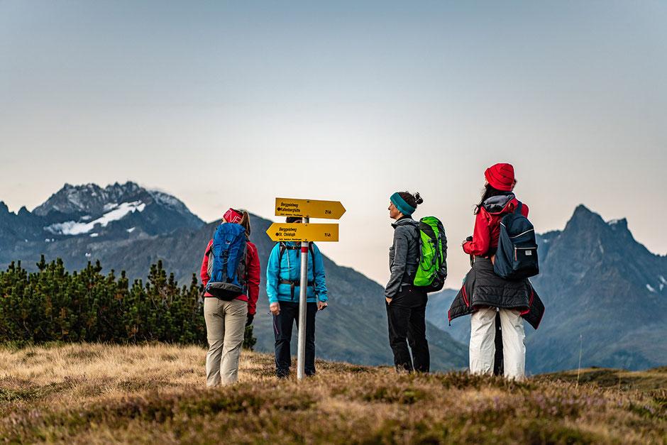 Berggeistweg - Kaltenberghütte