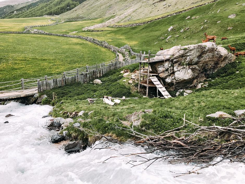 zurück in Melag im Langtauferer Tal