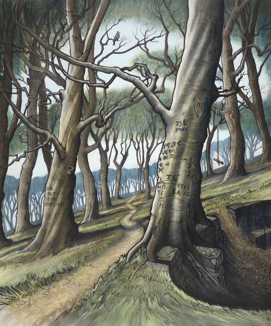 derbyshire art print playing woodland