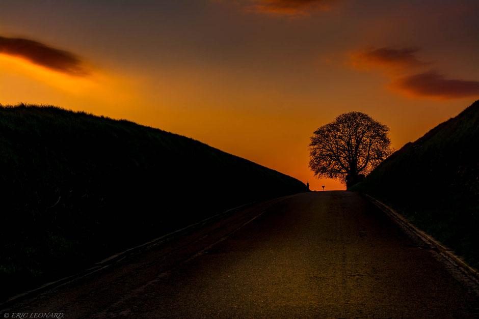 Photo de paysage, Le plaisir photographique, Léonard Eric, Sur la route.