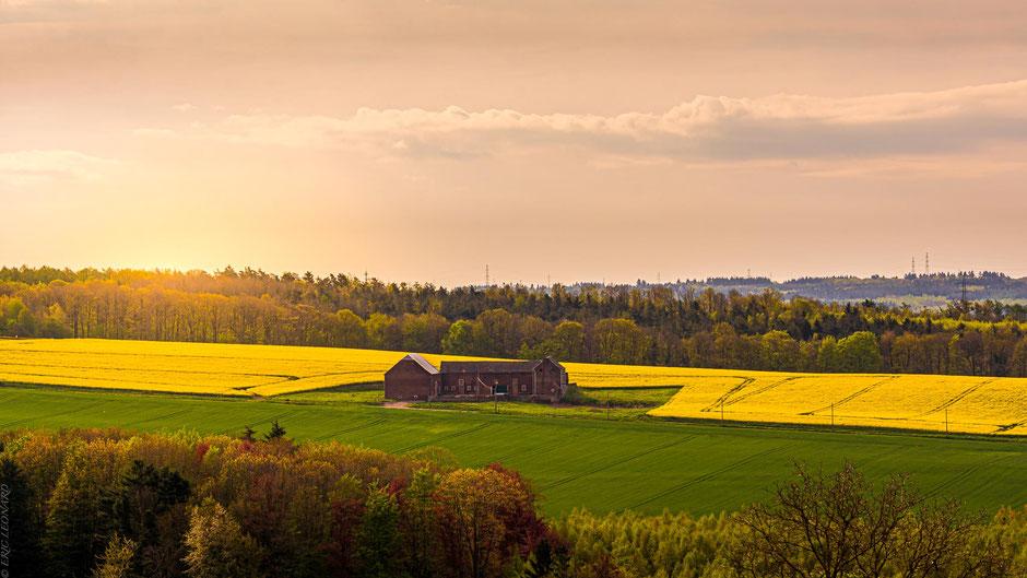 Photo de paysage, Le plaisir photographique, Léonard Eric, La Hesbaye et ses couleurs !