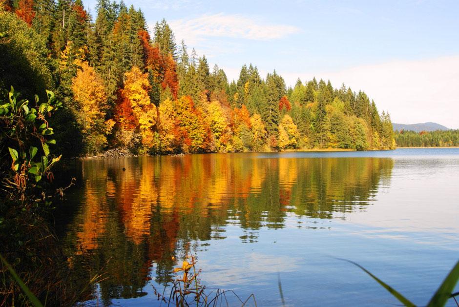 Herbst am Walchensee