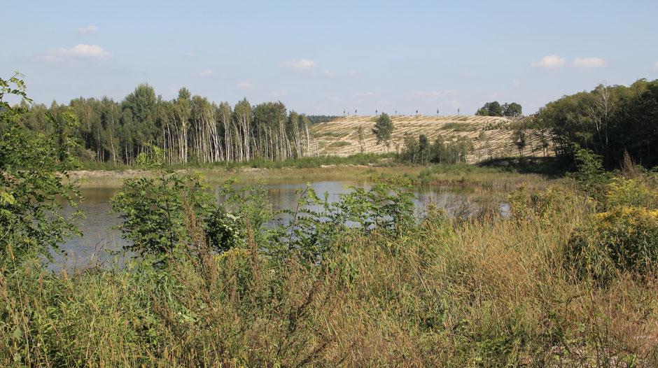 Der Annahütter Silbersee liegt direkt neben unserem Haus