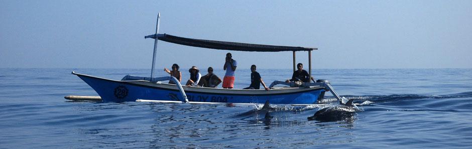 Dolfijnen spotten bij Lovina op Bali