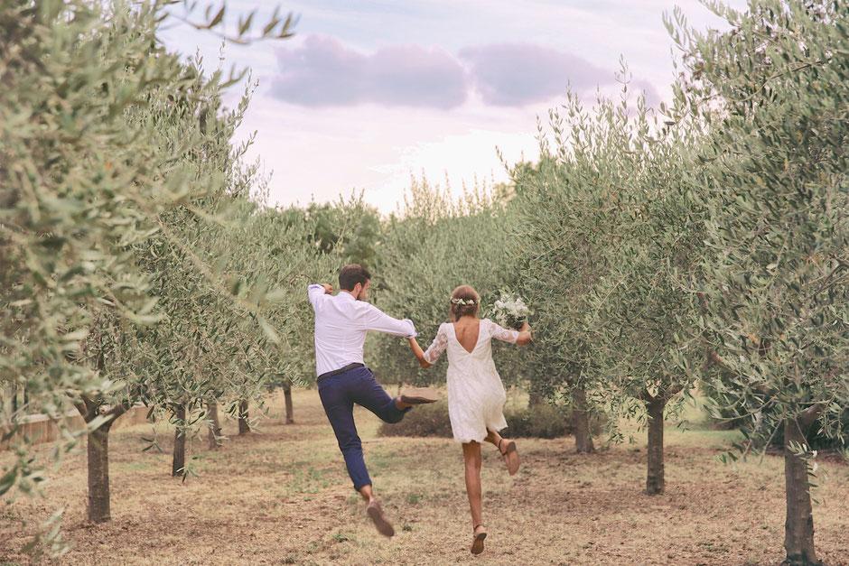 Mariage oliviers Sud France