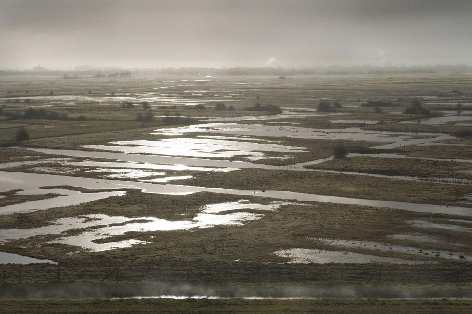 De Yerseke Moer in vogelvlucht op een wintermorgen | © TekstEnPlaat.nl Jan-Kees de Meester