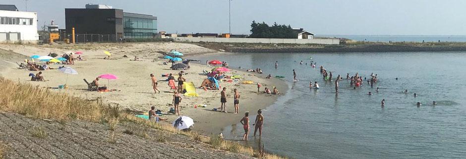Strandgangers in Hansweert | Foto: Een anonieme badgast (dus niet van Tekst en Plaat)