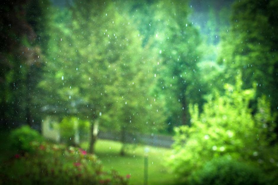 hochzeit regen, regen zur Hochzeit