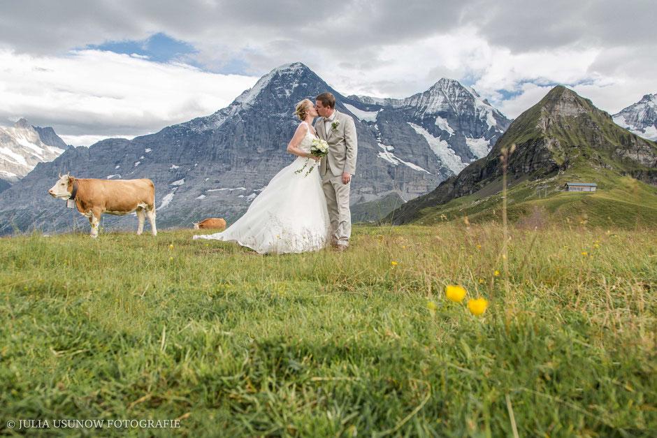 Heiraten auf dem Männlichen, Fotoshooting mit Kühen